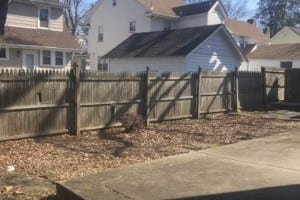 Before new fence and backyard renovation