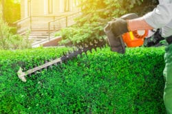 landscape maintenance contractors in West Chester PA